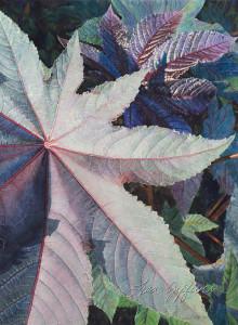 LIsa-Jefferson,watercolors,Garden-Star,watercolor,Castor-Bean-plant,big-leaves