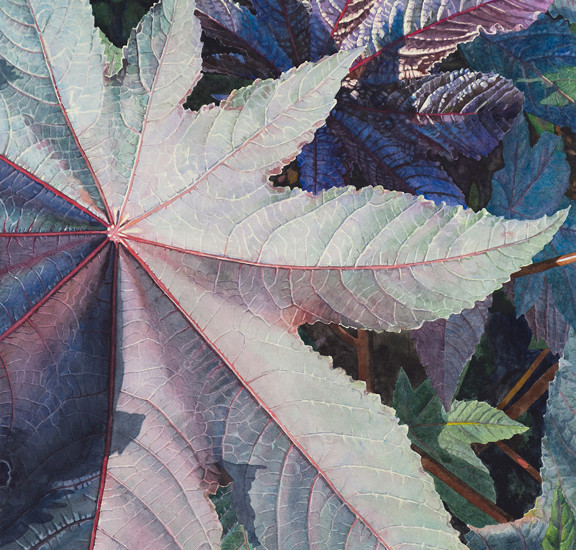 LIsa-Jefferson,watercolors,Garden-Star,watercolor,Castor-Bean-plant,big-leaves