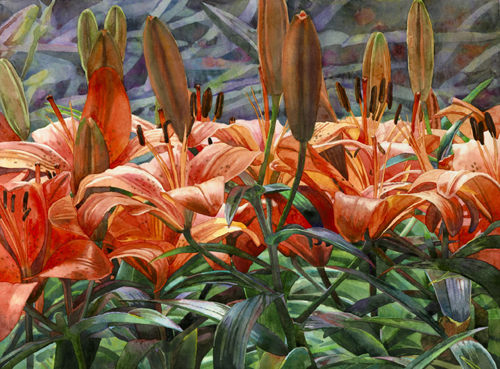 Lisa-Jefferson,watercolors,March-Of-The-Lilies,watercolor,orange-lilies