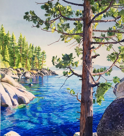 Watercolor of a cedar tree rising above the lake