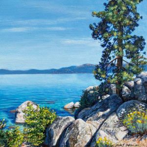 pine overlooking the lake